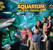Ripleys Aquarium of the Smokies in Tennessee