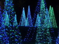Bellingrath Gardens - Magic of Christmas in Lights, Theodore, Alabama
