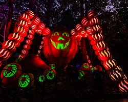 Great Pumpkin LumiNights, Dollywood, Tennessee