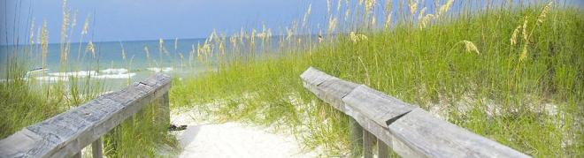 Gulf Coast in Alabama