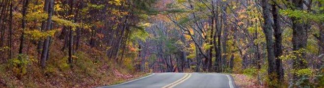 Autumn in Alabama